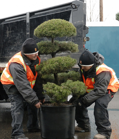 landscape service workers working