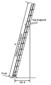 illustration of ladder