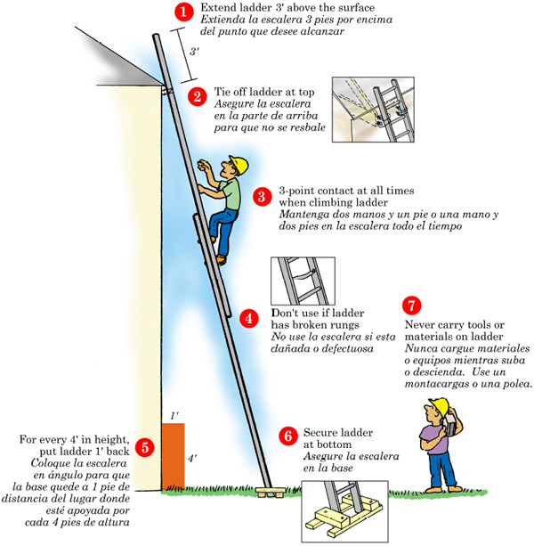 7 Steps to Ladder Safety poster