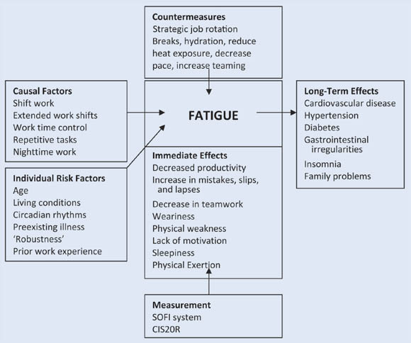 Effects of fatigue at work