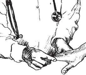 doctor looking at hands