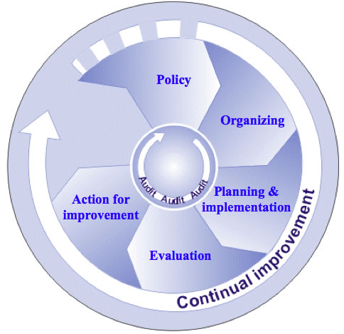 Chart of the main elements of the OSH management system