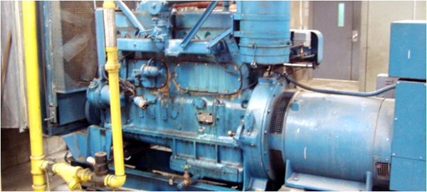 eLCOSH : 2-hr Generator Safety Awareness Module 1 - Fixed