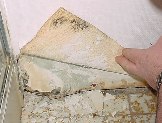 Elcosh mold in construction for Is there asbestos in drywall